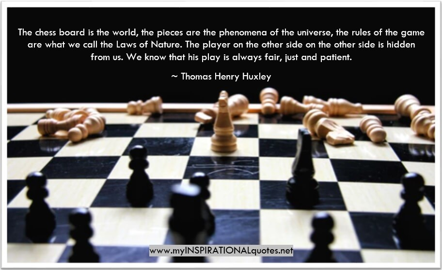 The chess board is the world